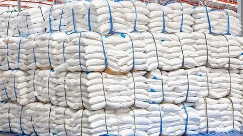 sacos polipropileno laminado